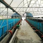 Fish ponds - Irrigation Systems